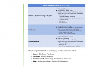 summary of findings health needs assessment_Page_2